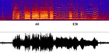 Iceberg harmonic tremor spectrogram