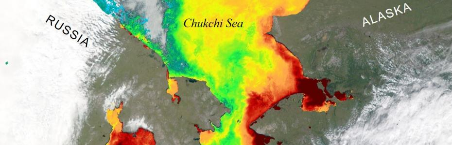 Satellite view of the Chukchi Sea warming as the sea ice melts away for the summer (2012).