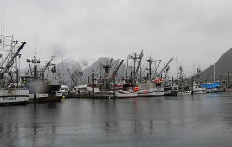 photo of fishing ships in Alaska