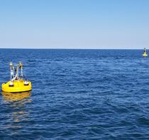 CBIBS First Landing Buoys