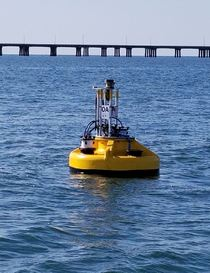 CBIBS First Landing Buoy