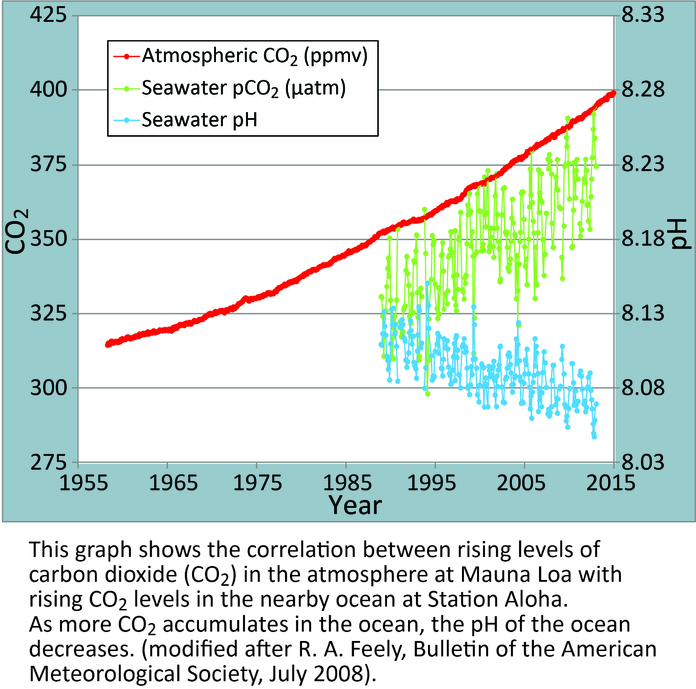 Hawaii Carbon Dioxide Time-Series