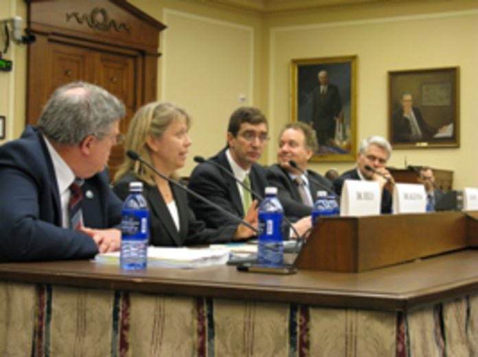 Witness panel at June 2008 hearing