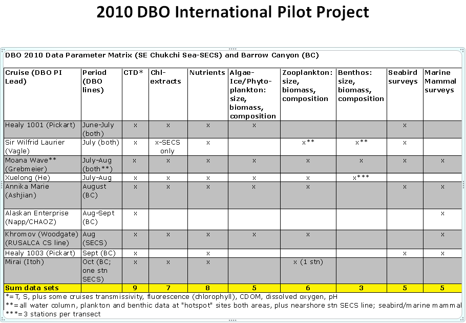 2010 DBO International Pilot Project