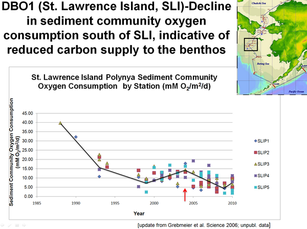 DBO1 (St. Lawrence Island, SL1) Decline in sediment community oxygen consumption south of SL1, indicative of reduced carbon supply to the benthos