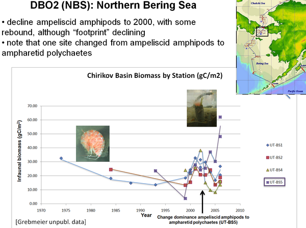 DBO2 (NBS):  North Bering Sea