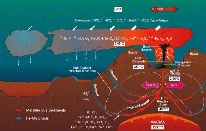 Where does chemosynthesis occur in the ocean