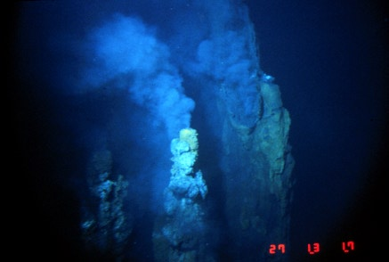 chemosynthesis organisms found A black smoker or deep sea vent is a type of hydrothermal vent found on  of organisms found around  energy through a process called chemosynthesis.