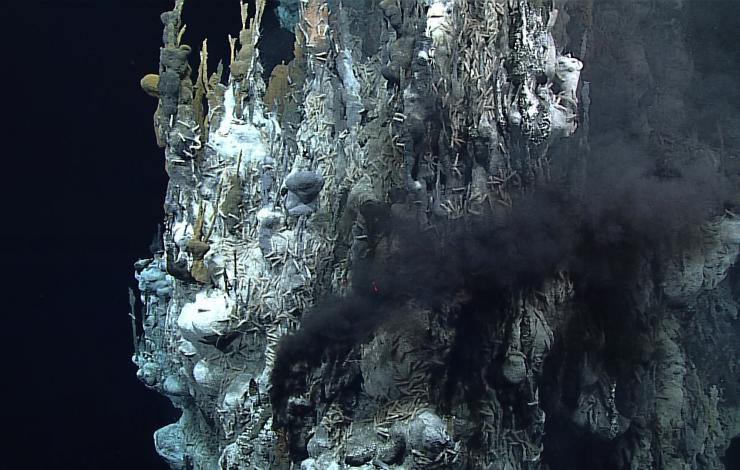 image of hydrothermal vent