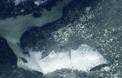 Methane hydrate depost on seafloor