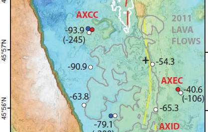 Vertical displacements at measured sites at Axial Seamount