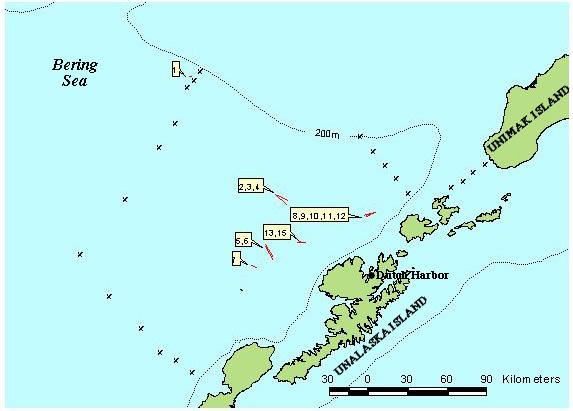 Eastern Bering Sea mesopelagic survey