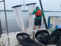 Zooplankton sampling nets