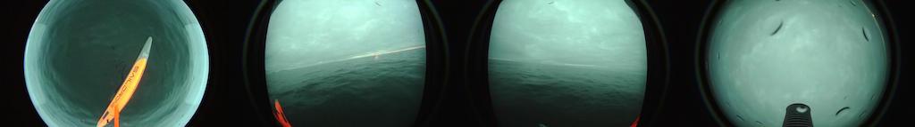 Bering Strait_1002_BEST.jpeg