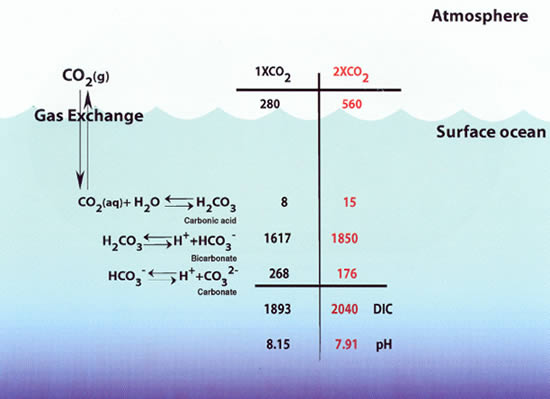 Feely Et Al Uptake And Storage Of Carbon Dioxide In