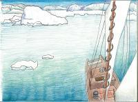 David's Arctic