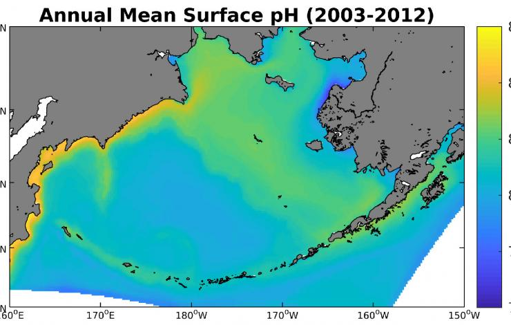 Modeled annual mean surface pH over the 2003-12 timeframe.