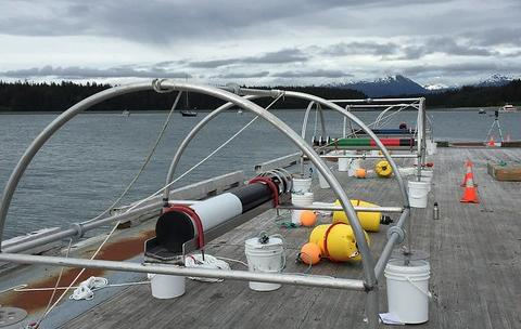 An underwater hydrophone prior to deployment in Glacier Bay National Park and Preserve.