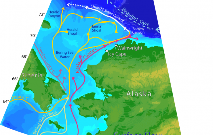 Map of Alaskan waters showing various branches of the flow in the Chukchi Sea and along the slope.