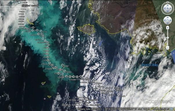 Satellite image of phytoplankton bloom