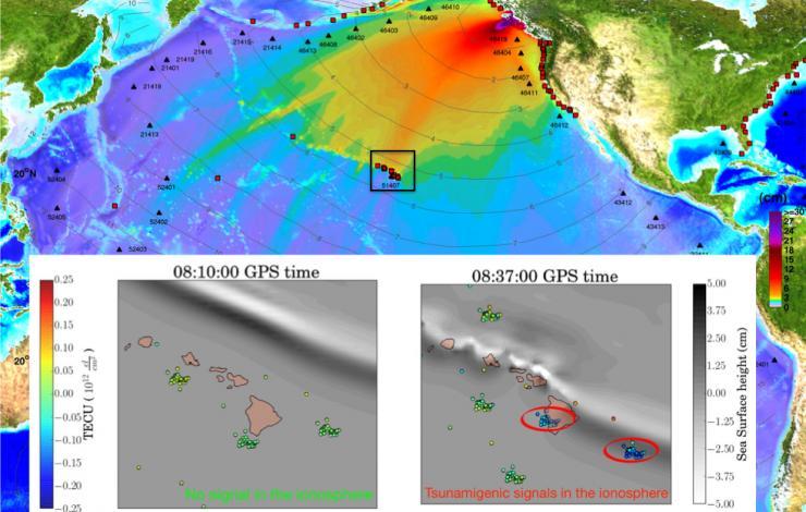 Maximum wave amplitude for the October 28, 2012 Haida Gwaii Tsunami