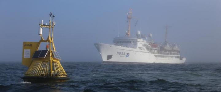 Buoy and ship