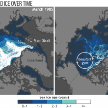 These maps show the age of sea ice in the Arctic ice pack in March 1985 (left) and March 2018 (right). Less than 1 percent of Arctic ice has survived four or more summers.