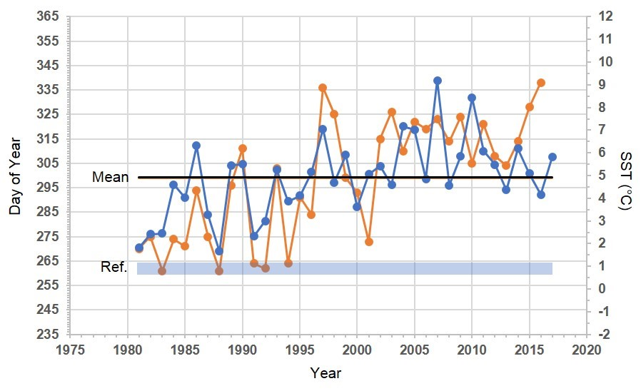 Time series graph of interpolated and observed SST and freeze onset date